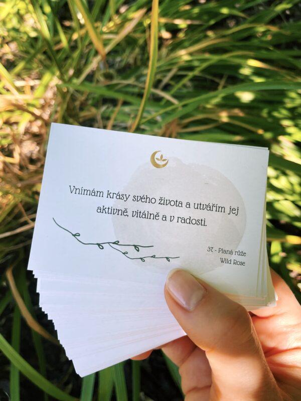 Afirmační karty Bachovy esence od autorky anami